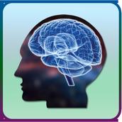 Brain Training Exercise