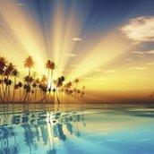 Sun Rays Wallpaper