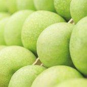 Green Apple Wallpaper