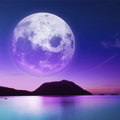 Moonlight beach wallpaper
